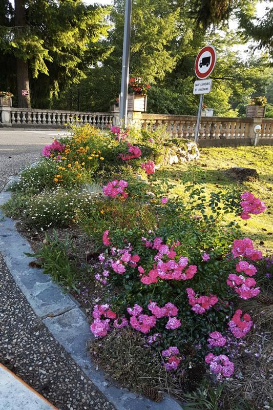 Massif fleuri Saint-Pardoux-la-Rivière