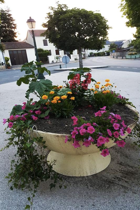Fleurissement du village de Saint-Pardoux-la-RIvière