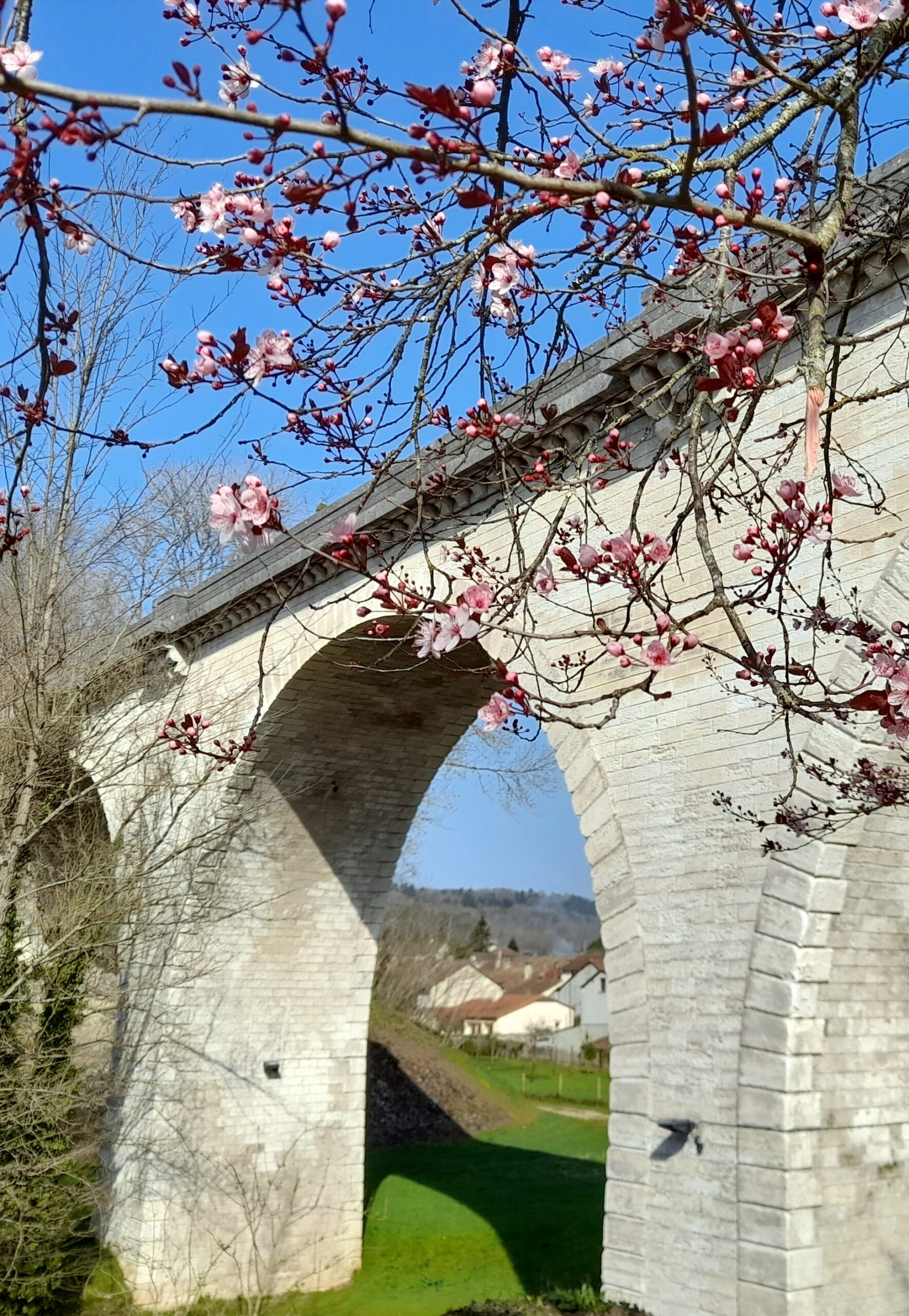 Viaduc de Saint-Pardoux-la-Rivière